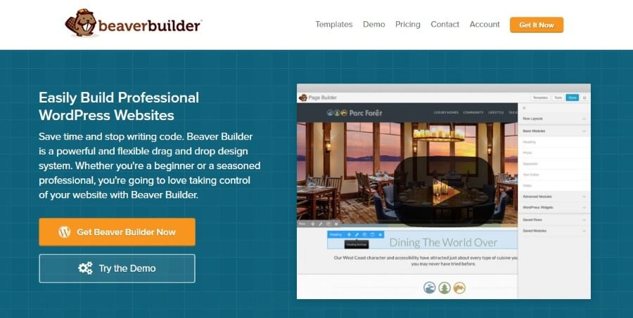 wp theme builder