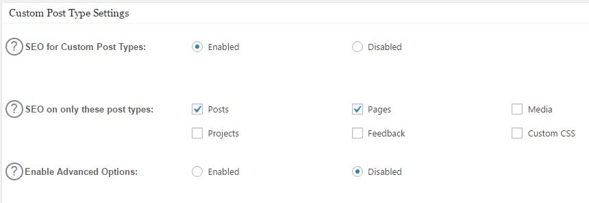 All In One SEO's custom post type's settings.