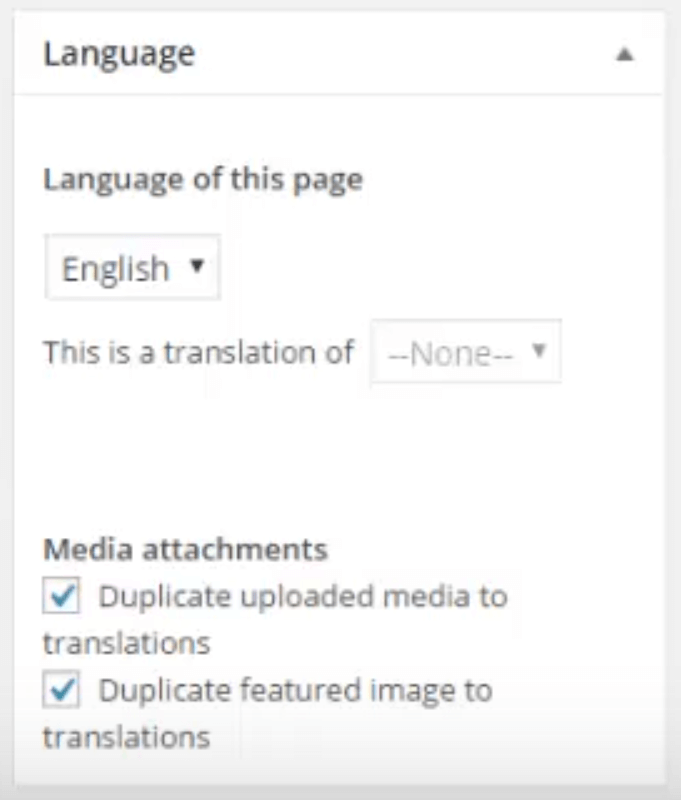 The option to switch between languages on your posts and pages.