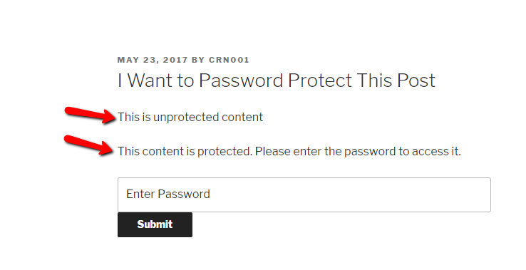 what password shortcode looks like on front-end
