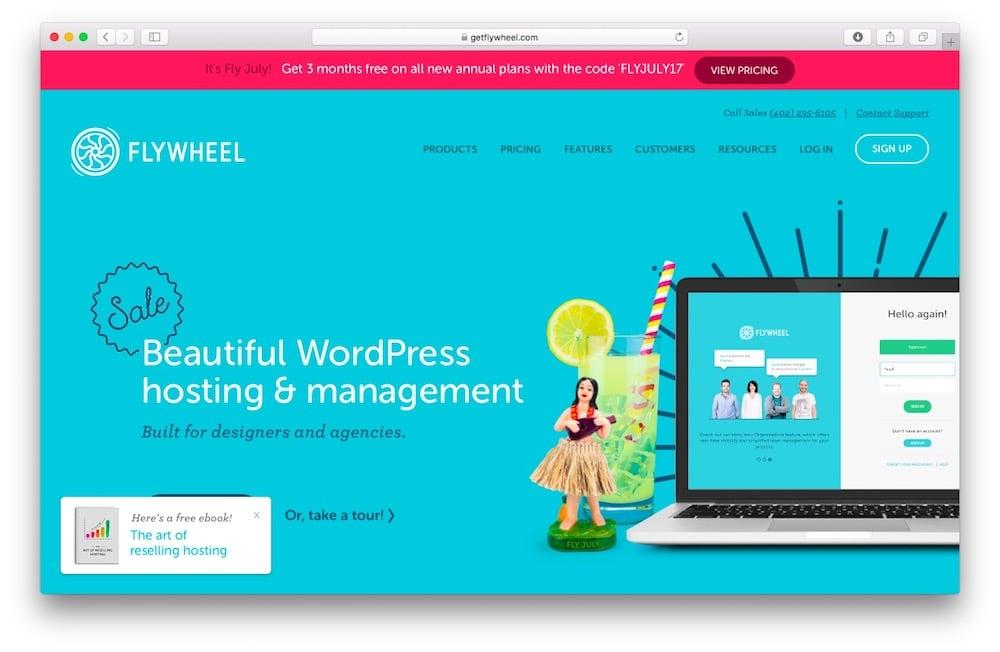 Flywheel WordPress blog hosting