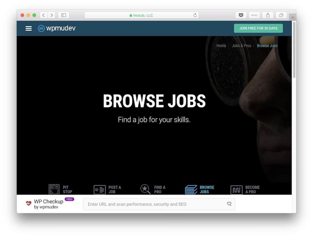 The WPMU DEV Jobs homepage
