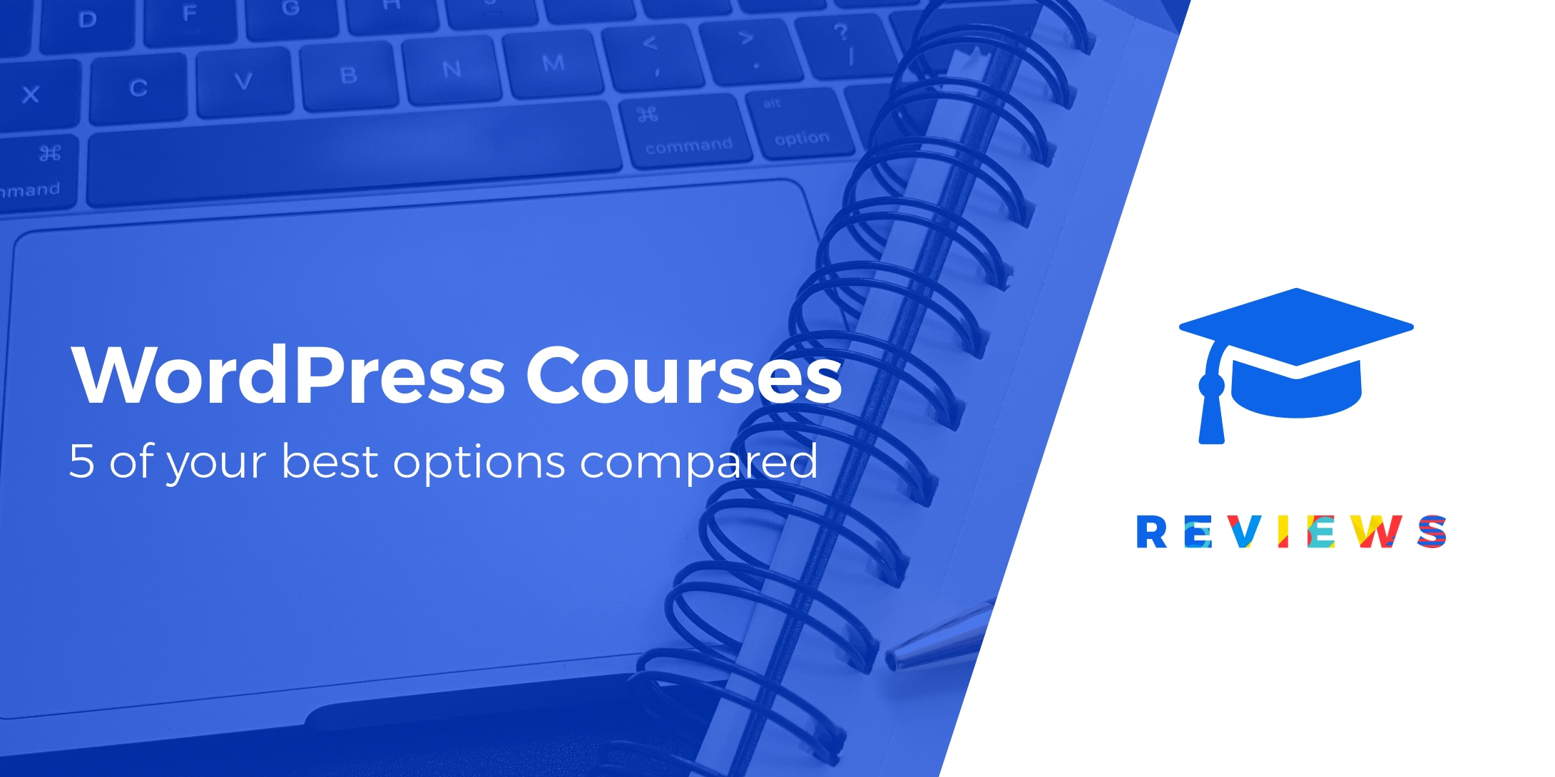 online WordPress courses