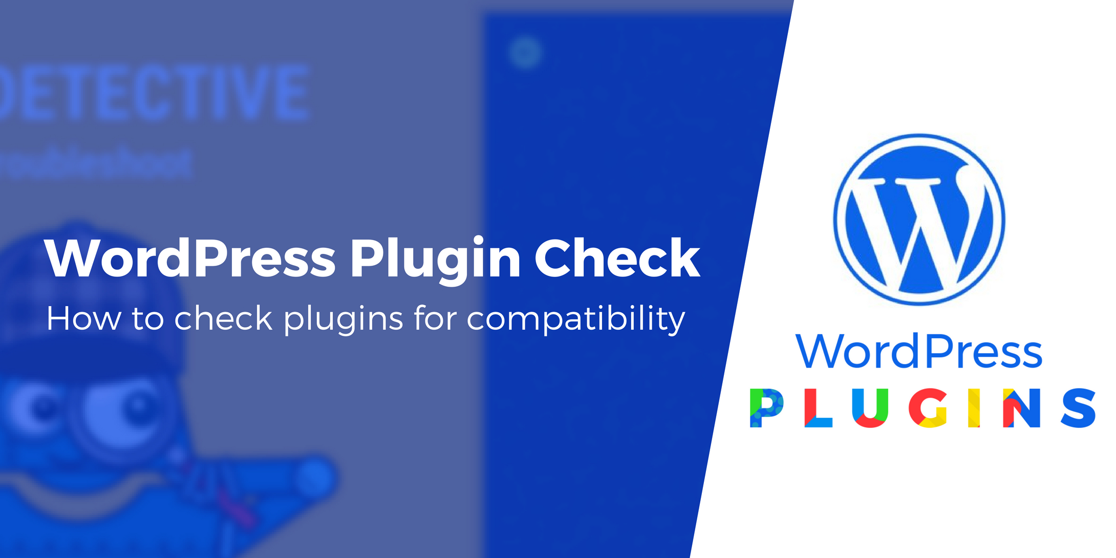 WordPress Plugin Check