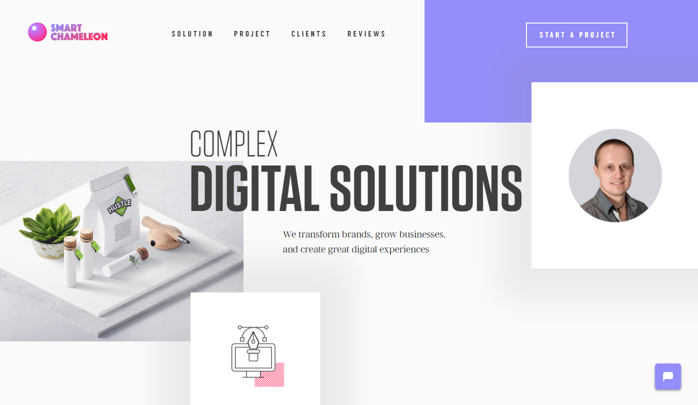 Smart Chameleon is one of the best sample WordPress sites