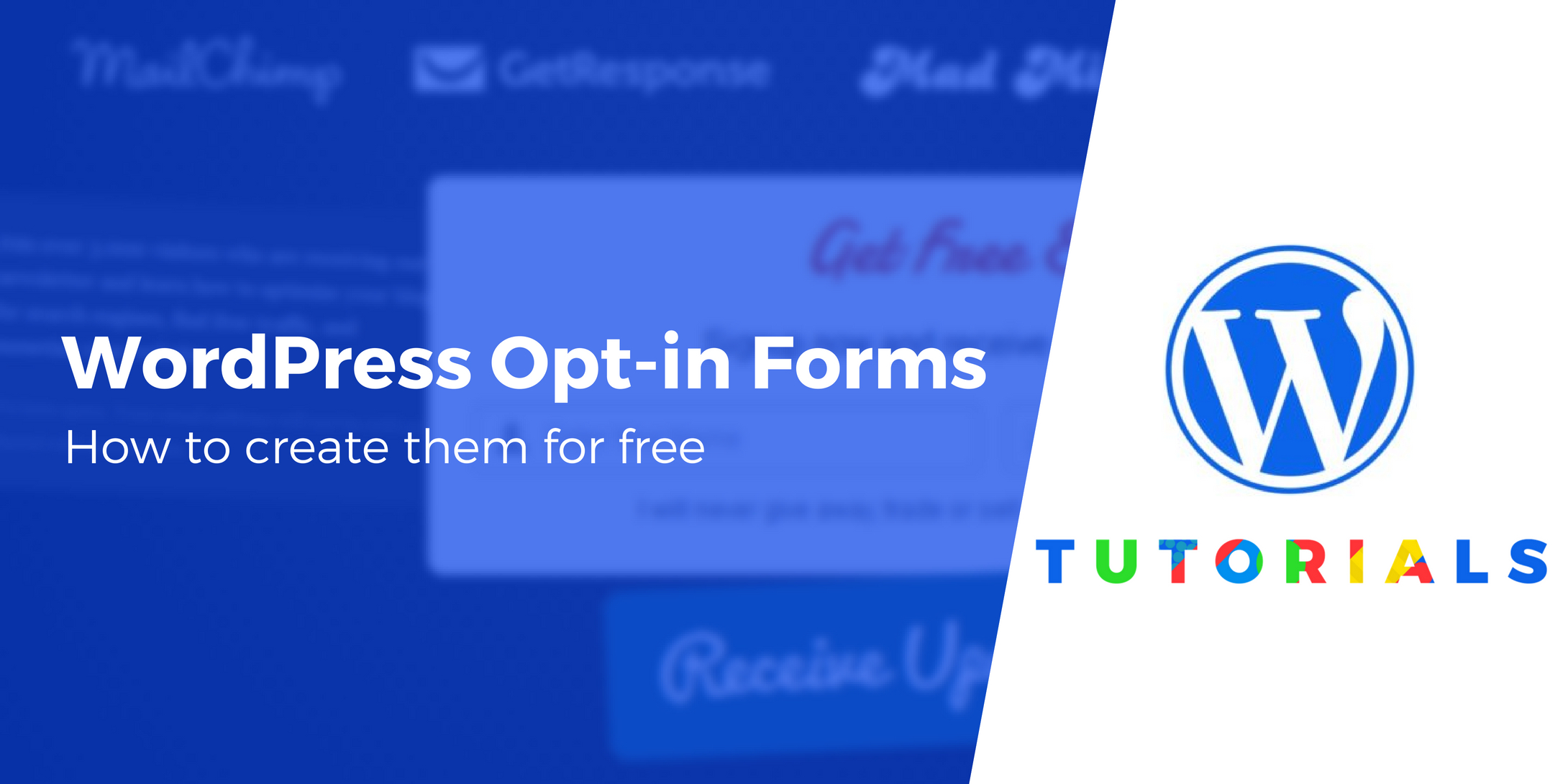 WordPress opt-in forms