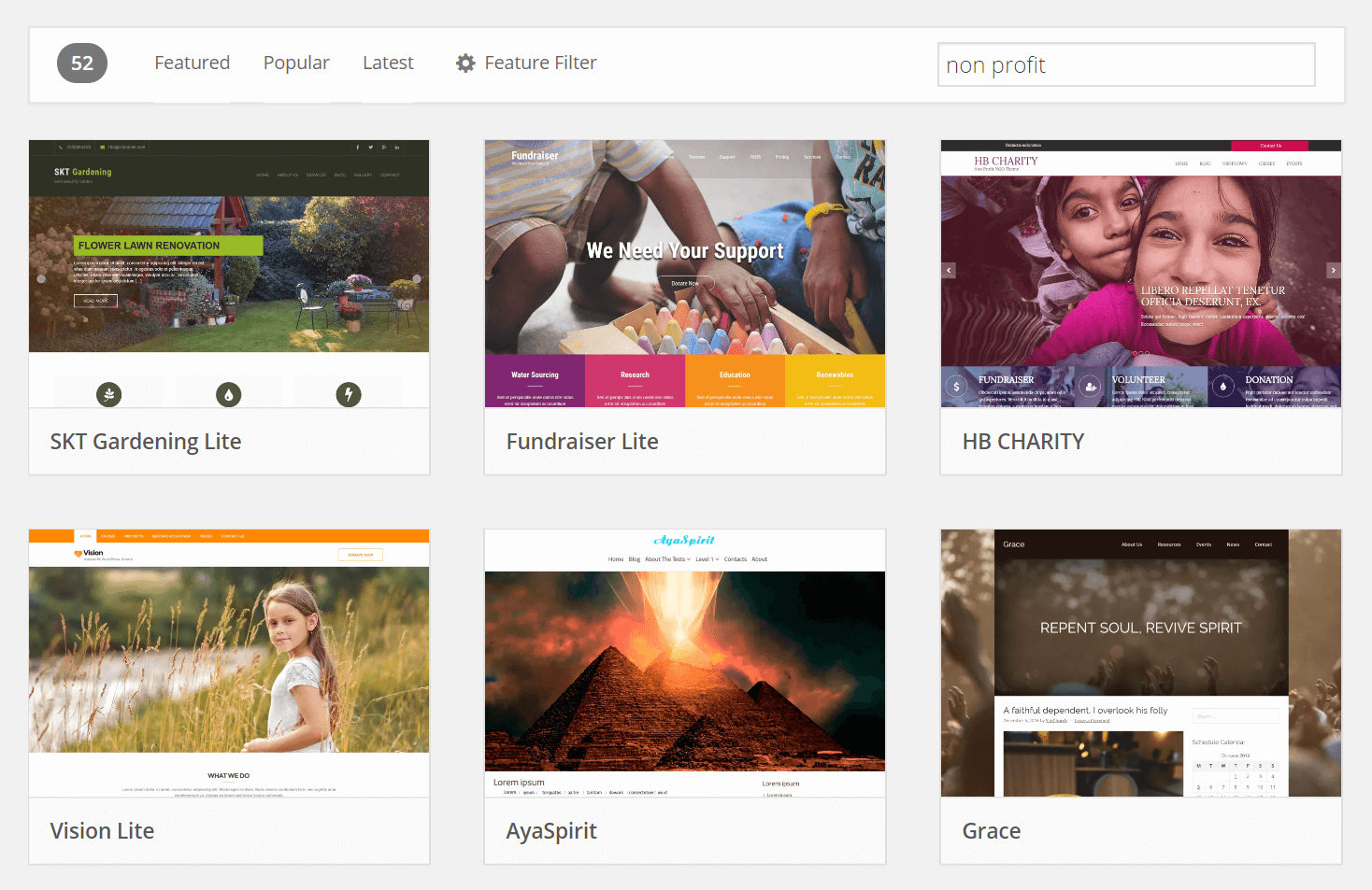 WordPress themes for a nonprofit website.