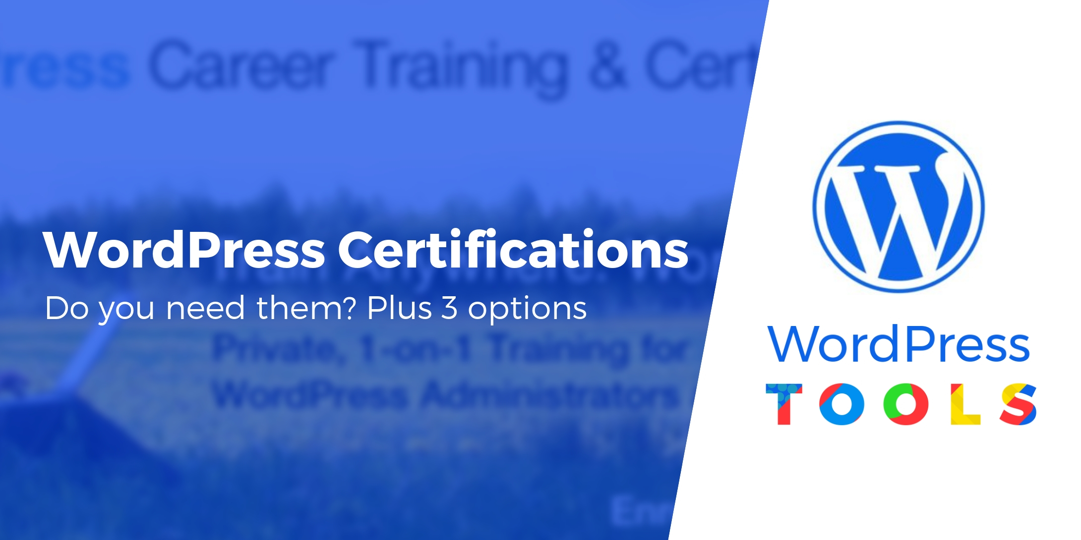 WordPress Certifications