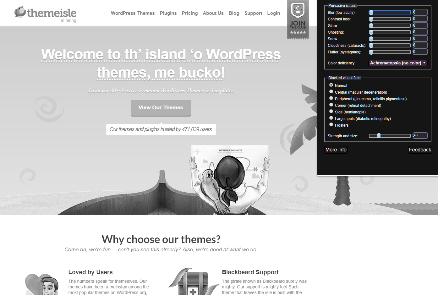 Our site in gray scale when using an accessibility testing tool for vision problems