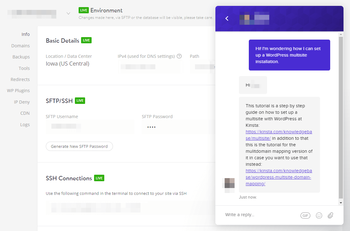 A live chat with Kinsta.
