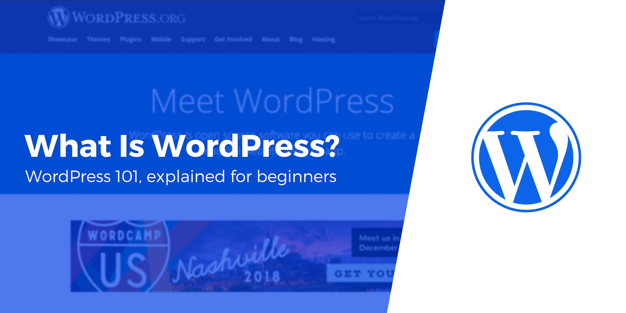 What Is WordPress? WordPress 101, Explained for Beginners