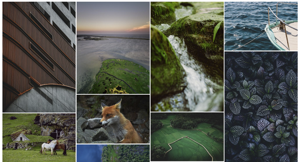 Galleries are a must-have WordPress plugins for photographers